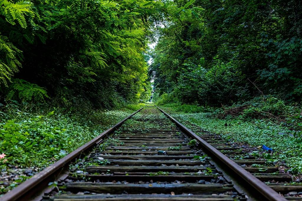 Forsidebilde for Ta toget dit du skal